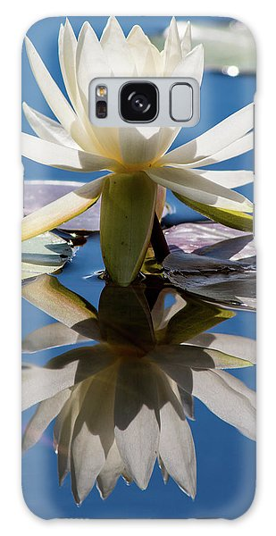 Water Lily Galaxy Case by Mary Hone