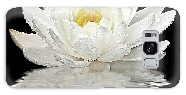 Water Lily Reflections On Black Galaxy Case by Gill Billington