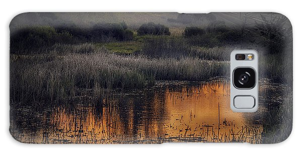 Waterbird Preserve Sunrise Galaxy Case