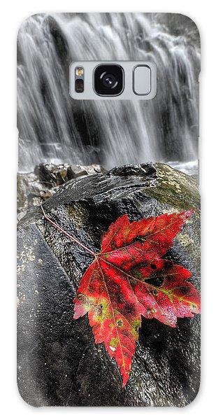 Waterfall In Fall Galaxy Case