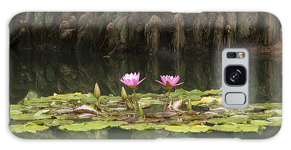 Waterlilies And Cyprus Knees Galaxy Case