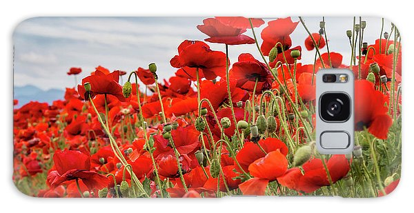 Waving Red Poppies Galaxy Case