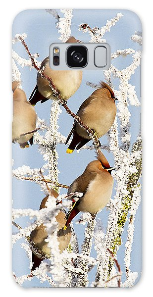 Waxwings And Hoar Frost Galaxy Case