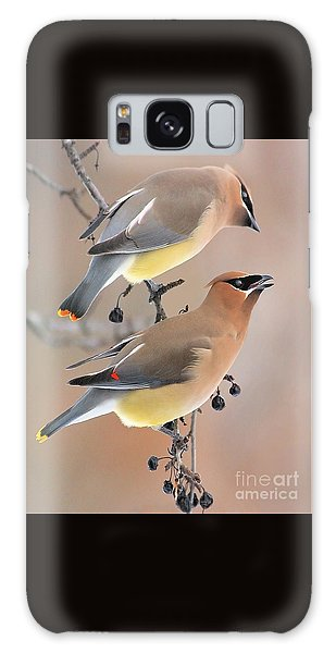 Waxwings Galaxy Case by Debbie Stahre