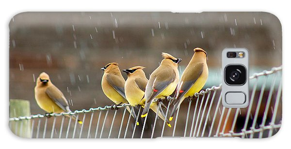 Waxwings In The Rain Galaxy Case by Sean Griffin