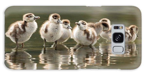 Gosling Galaxy Case - We Are Family - Seven Egytean Goslings In A Row by Roeselien Raimond