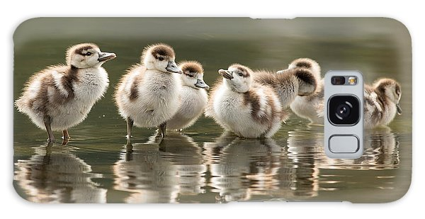 Goose Galaxy Case - We Are Family - Seven Egytean Goslings In A Row by Roeselien Raimond