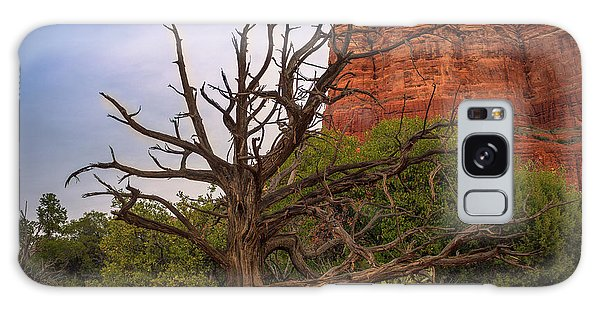 Weathered Tree At Courthouse Butte Galaxy Case