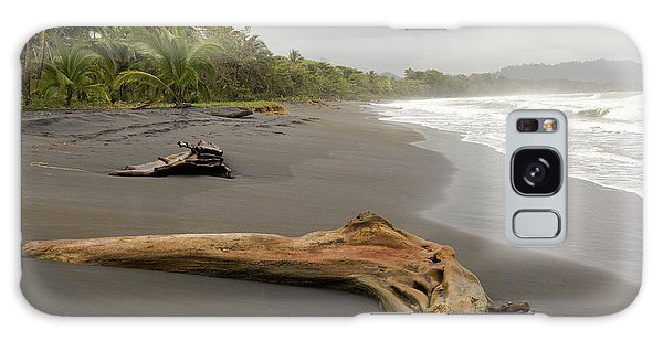 Weathered Tree On Costa Rica Beach Galaxy Case