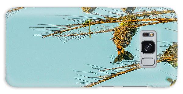 Weaver Birds Galaxy Case