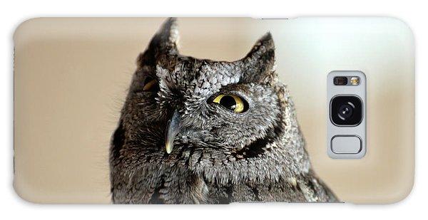 Wee Western Screech Owl Galaxy Case