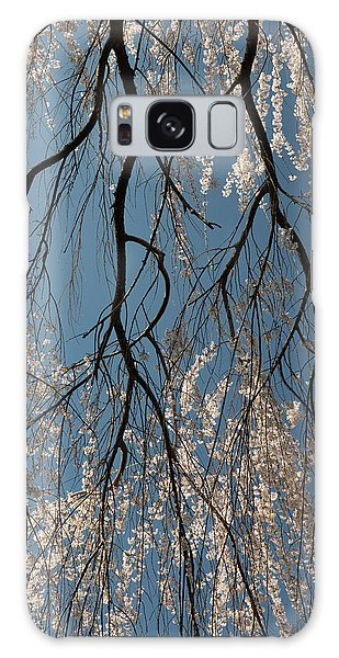 Weeping Cherry #2 Galaxy Case