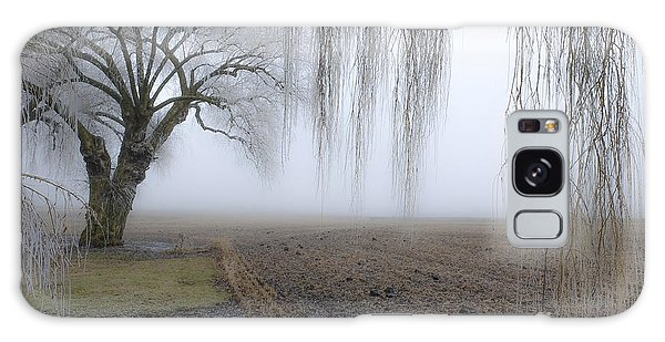 Weeping Frozen Willow Galaxy Case