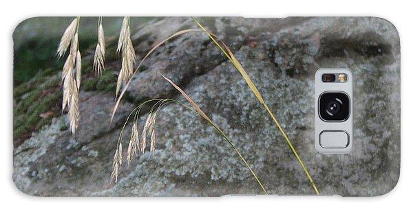 Weeping Grass Galaxy Case