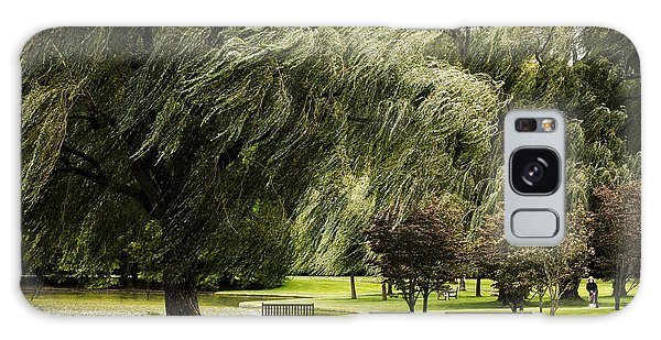 Weeping Willow Trees On Windy Day Galaxy Case by Carol F Austin