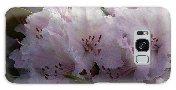 Weigela Blossom Galaxy Case