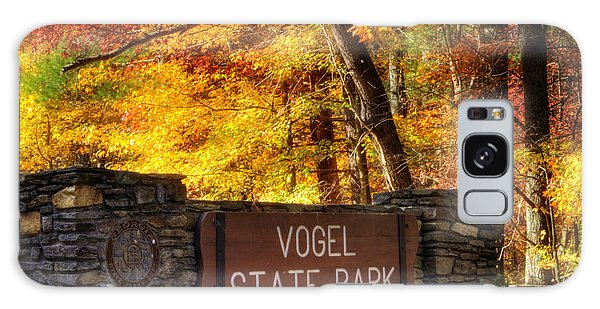 Welcome To Vogel State Park Galaxy Case