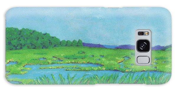 Wellfleet Wetlands Galaxy Case