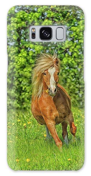 Galaxy Case - Welsh Pony by Shawn Hamilton