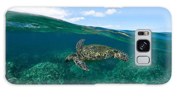 West Maui Green Sea Turtle Galaxy Case