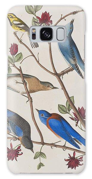 Bluebird Galaxy S8 Case - Western Blue-bird by John James Audubon