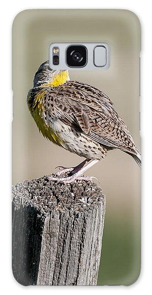 Western Meadowlark Galaxy Case