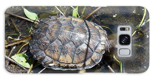 Western Pond Turtle, Actinemys Marmorata Galaxy Case
