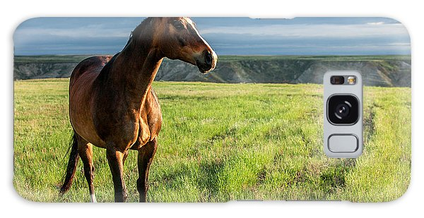 Horse Galaxy Case - Western Stallion by Todd Klassy