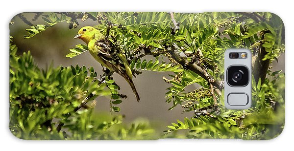 Western Tanager Galaxy Case by Robert Bales