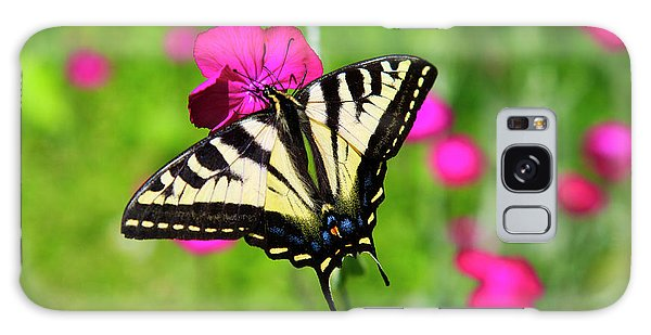 Western Tiger Swallowtail Butterfly Galaxy Case