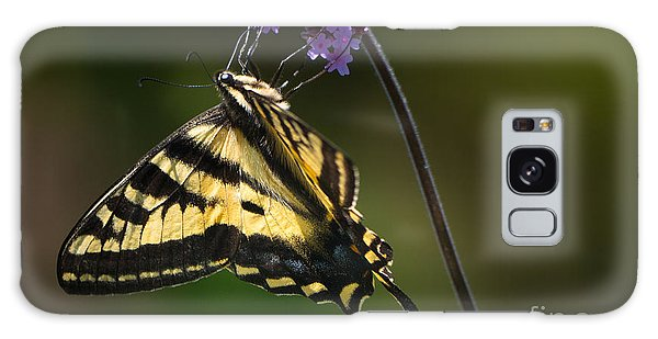 Western Tiger Swallowtail Butterfly On Purble Verbena Galaxy Case