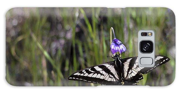 Western Tiger Swallowtail Galaxy Case