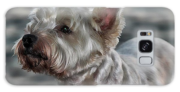 Westie Love Galaxy Case