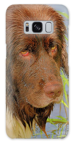Galaxy Case featuring the photograph Wet Newfie by Debbie Stahre
