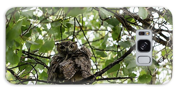 Wet Owl - Wide View Galaxy Case