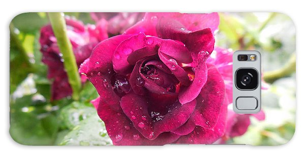 Wet Rose Galaxy Case