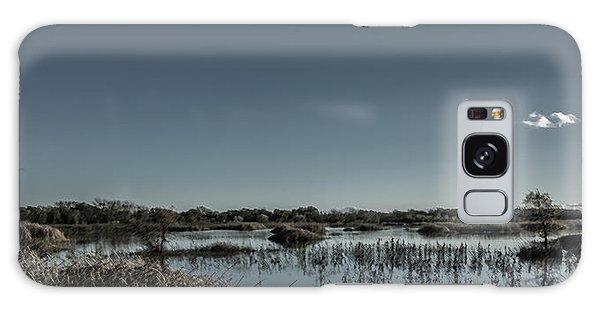 Wetlands Desaturated  Galaxy Case