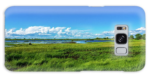 Wetlands On A Windy Spring Day Galaxy Case