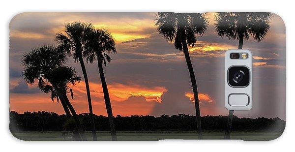 Wetlands Sunset Galaxy Case