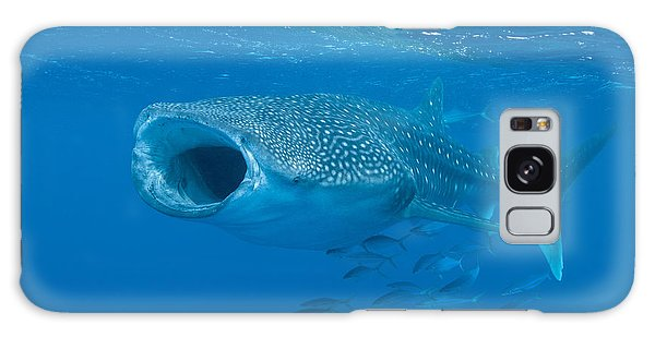 Galaxy Case featuring the photograph Whale Shark, Ari And Male Atoll by Mathieu Meur