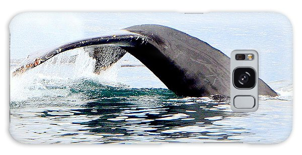 Whale Watch Moss Landing Series 24 Galaxy Case by Antonia Citrino