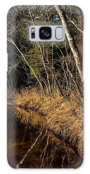 Wharton Forest Fall Galaxy Case
