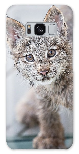 Alaska Galaxy Case - What Are You by Tim Newton