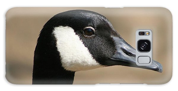 Canadian Goose Galaxy Case