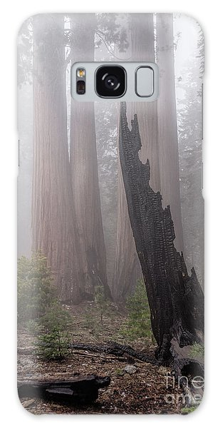 Galaxy Case featuring the photograph What Lurks In The Forest by Peggy Hughes