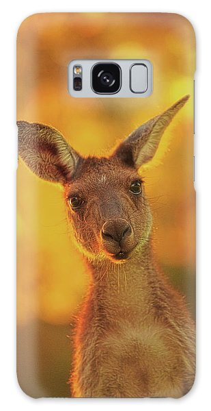 What's Up, Yanchep National Park Galaxy Case