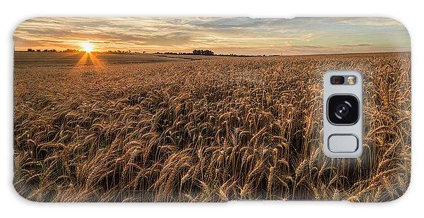 Wheat At Sunset Galaxy Case