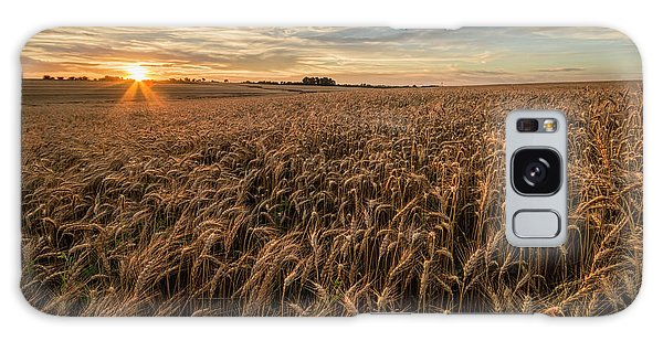 Wheat At Sunset Galaxy Case by Scott Bean