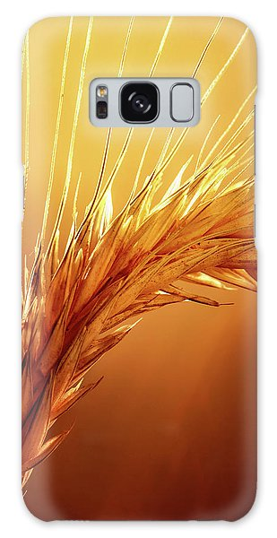 Wheat Close-up Galaxy Case
