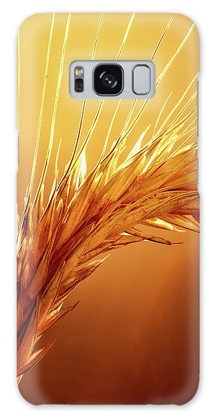 Colour Galaxy Case - Wheat Close-up by Johan Swanepoel